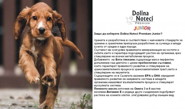 Dolina Noteci Premium Junior 300г пауч